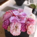 花箱-秋桜akizakura